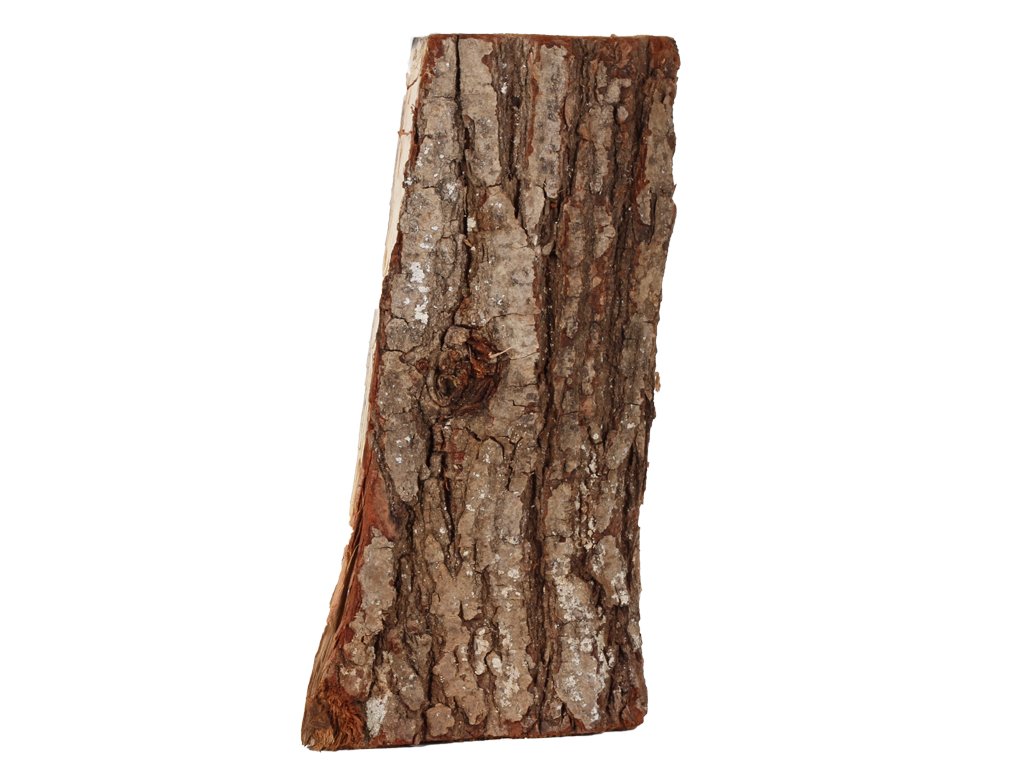 Eiche-Holz